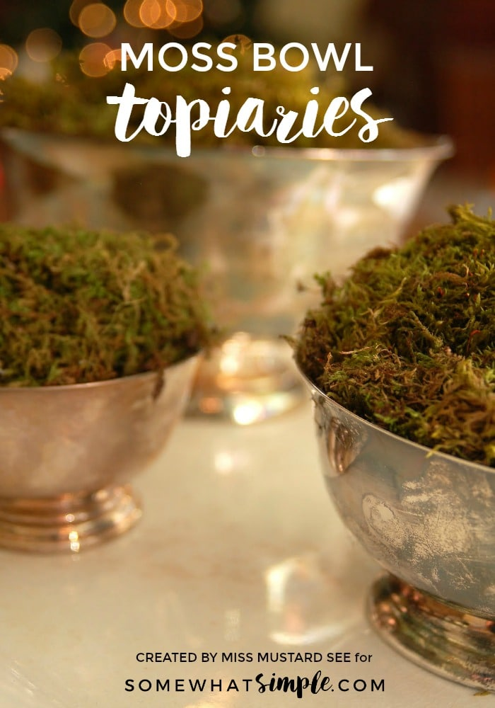 Moss Bowl Topiaries Tutorial Simple Decor Somewhat Simple
