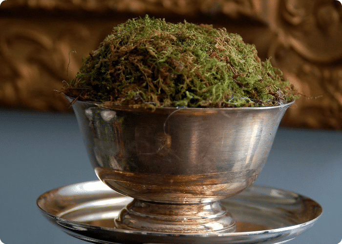 moss_bowl_topiary_5