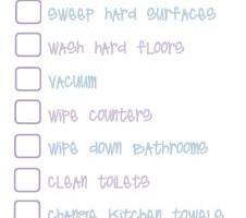 quick clean checklist pic