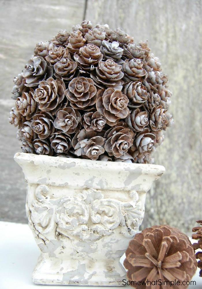 Pinecone Topiary Tutorial 4