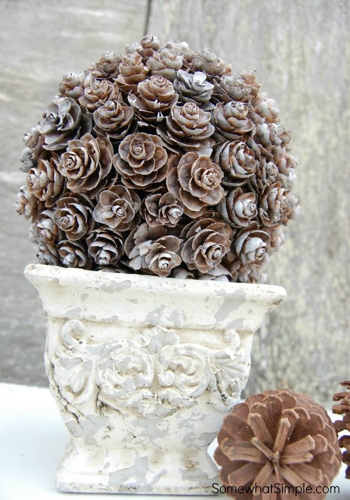 Pinecone Topiary Tutorial 4