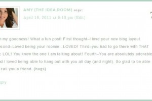 blog comments 2