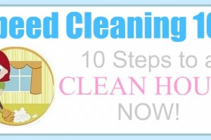 speed cleaning how to