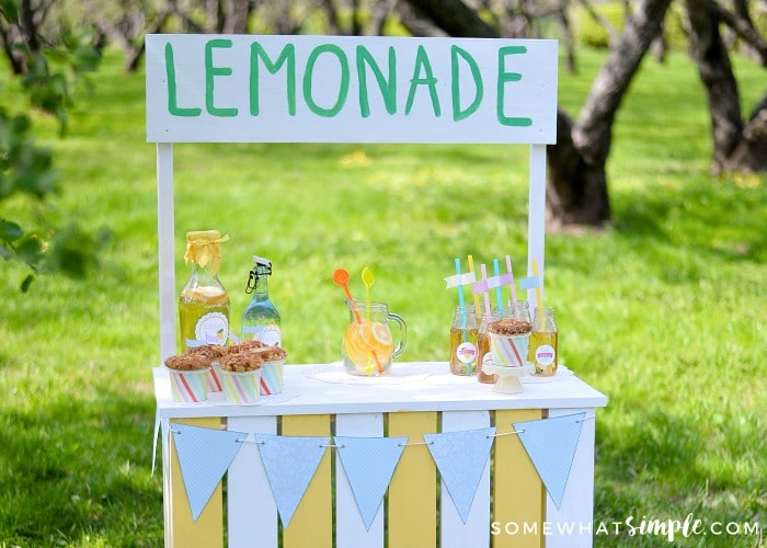 Lemonade Stand for a Good Cause