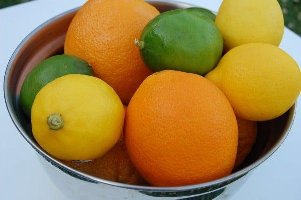 jello citrus treats 2