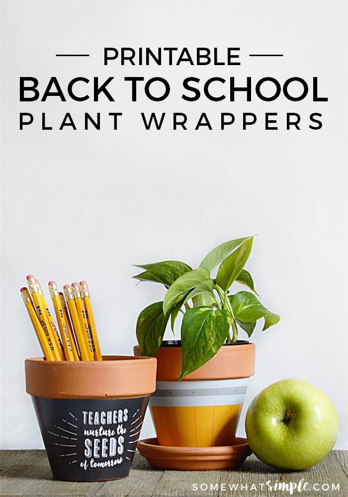 back-to-school-plant-wrappers-2
