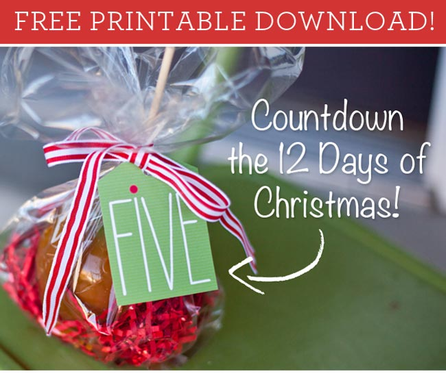 photograph regarding 12 Days of Christmas Printable Tags identified as 12 Times of Xmas Tags Cost-free Printable Rather Very simple