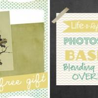photoshopbasics_lesson7_feature