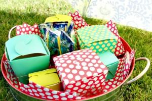 cost plus picnic 3