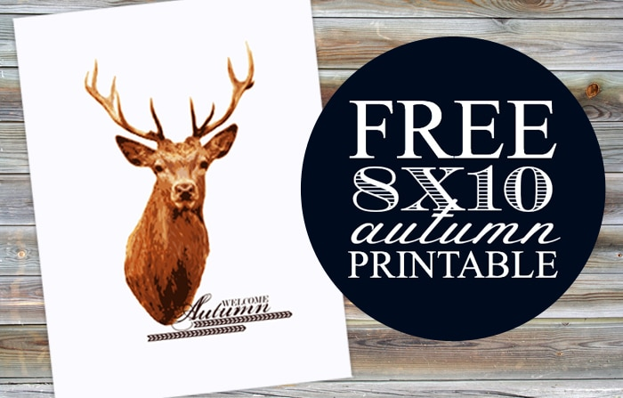 free paint by number autumn deer printable