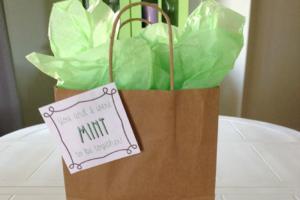 husband-gift-idea-mint