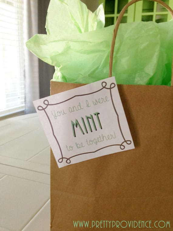 husband-gift-idea-mint