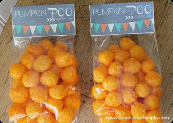 pumpkin poo 4