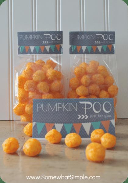 pumpkin poo 5