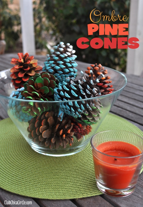 Blue-Ombre-Painted-Pine-Cone-Fall-Craft-Idea 6