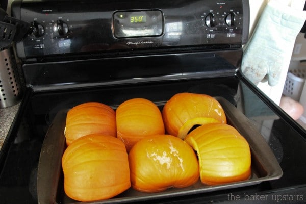pumpkin_puree_5