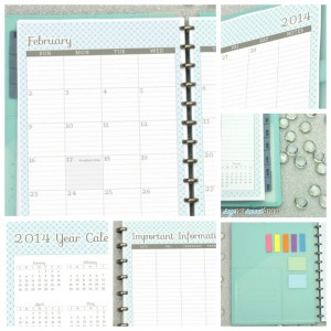 Amazing Printable Planner! Oct '13 - Dec '14 with tons of choices! Meal planning, lesson planning, kid sport tracking etc! | from saynotsweetanne.com