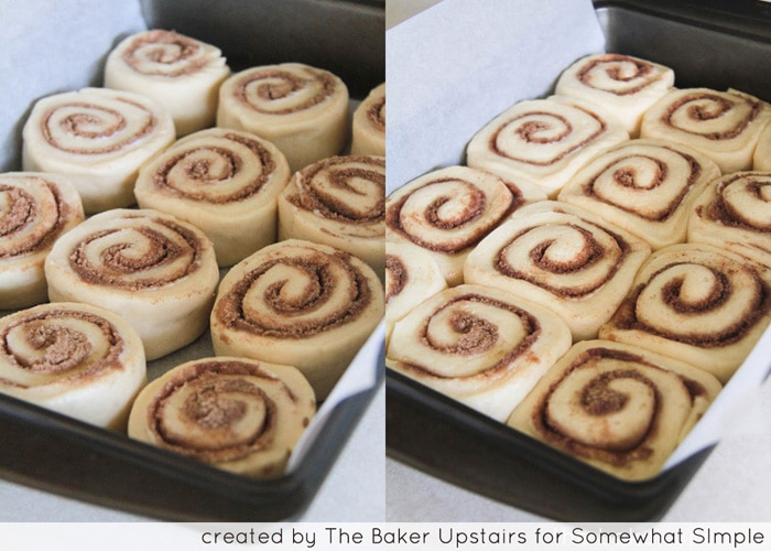 raw dough rolled up with cinnamon sugar filling and cut into slices layed out in a baking sheet