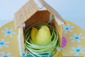 Easter Chick Bird House Craft