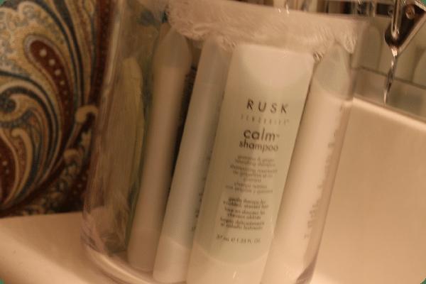 3 guest_bathroom