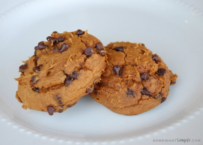 Chocolate Chip Pumpkin Cookies with only 3 ingredients - YUM!!!