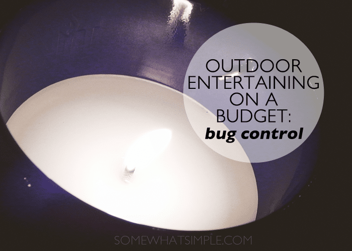 outdoor entertaining - bugs