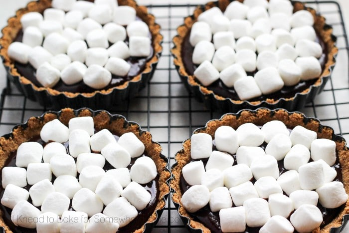 4 chocolate tarts with mini marshmallows