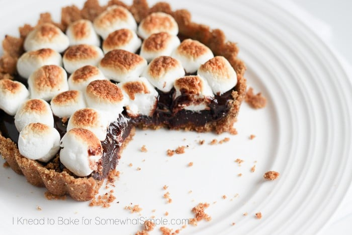 Mini S'mores Torte_8