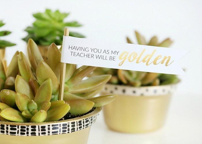 Golden Teacher Gift