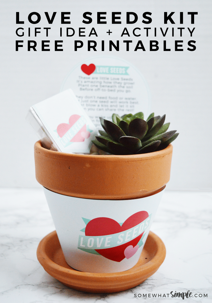 We love this simple idea of Love Seeds! Our Printable Kit is perfect for Valentine's Day, Birthdays, or any time you want to show your kids a little extra love! #Love #seeds #plant #kids