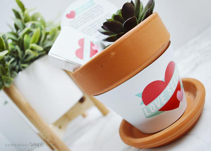 Seeds of Love Poem    Printable Activity Kit For Kids