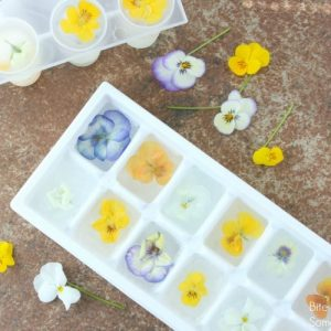 Edible Flower Ice Cubes are a beautiful way to dress up a simple glass of water. Perfect for baby showers, book clubs, or a Springtime dinner party!