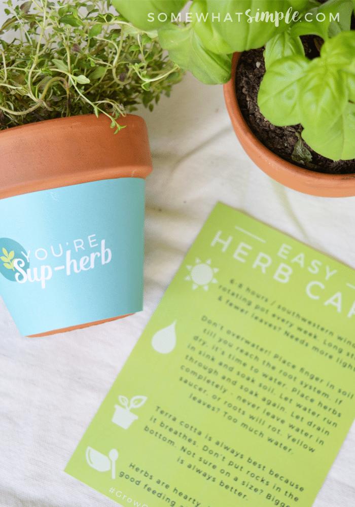 Plant pot wrapper free printable