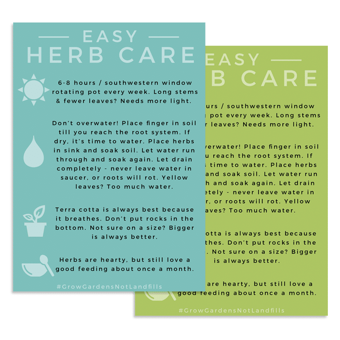 easy herb care printable