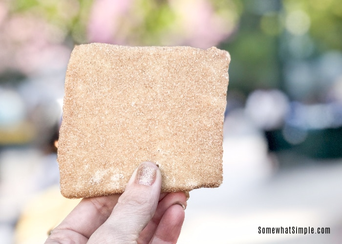 a square of churro toffee that can only be found at Disneyland and Disney's California Adventure parks