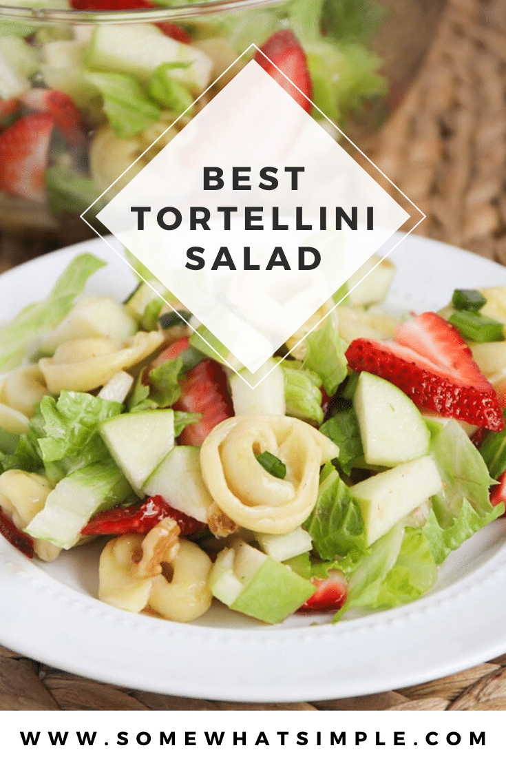 This tortellini apple salad is one of my favorite salads to make during the warm summer months! It is filling and fresh and very delicious! Made with fresh apples and strawberries and topped with a delicious homemade dressing, this salad recipe is amazing! #tortellinisalad #appletortellinisalad #summersaladrecipe #summertortellinisalad #tortellinisaladrecipe via @somewhatsimple