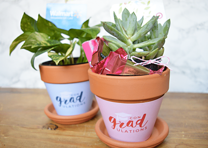 Graduation Gift Plant Wrappers Printable