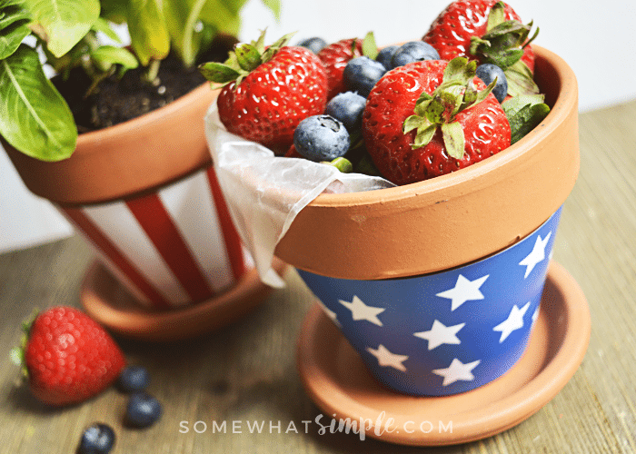Patriotic Terra Cotta Pot Wrappers berries