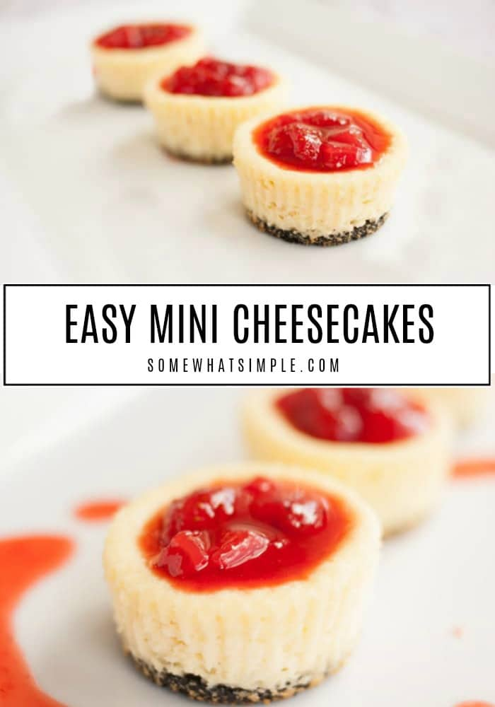 These mini cheesecakes are baked in cupcake pans and couldn't be any easier to make! Made with a delicious Oreo cookie crust, this little cheesecakes are irresistible! #minicheesecakes #minicheesecakeswithoreos #minicheesecakeswithanoreocrust #howtomakeminicheesecakes #easyminicheesecakes via @somewhatsimple