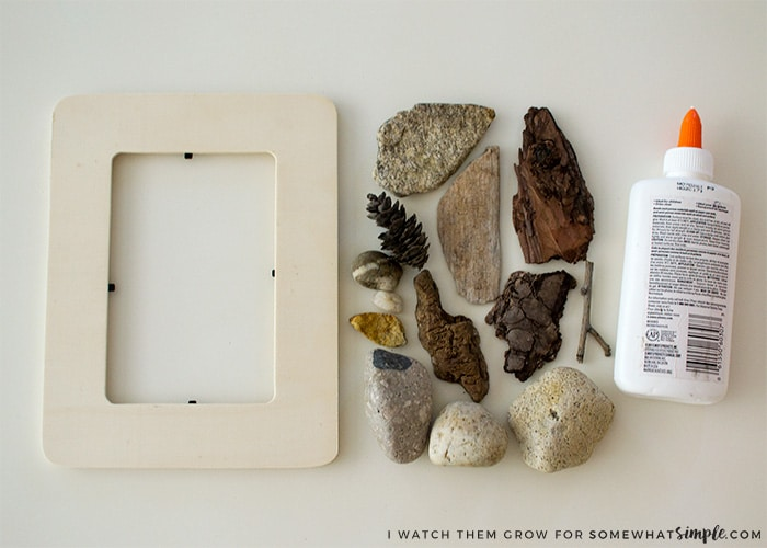 nature-walk-picture-frame1