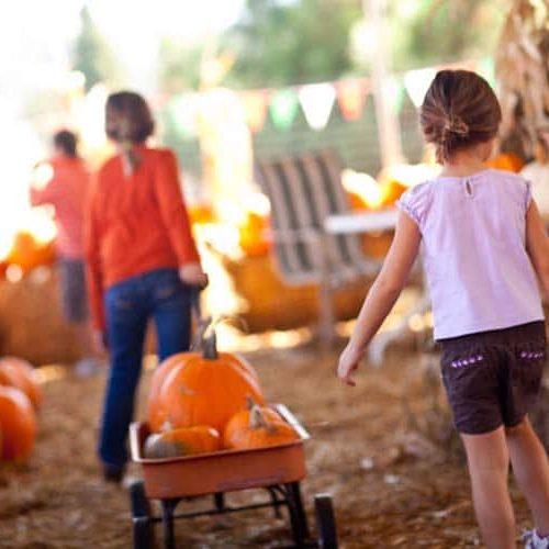 girls in a pumpkin patch