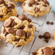Peanut Butter Cups Cookie Recipes