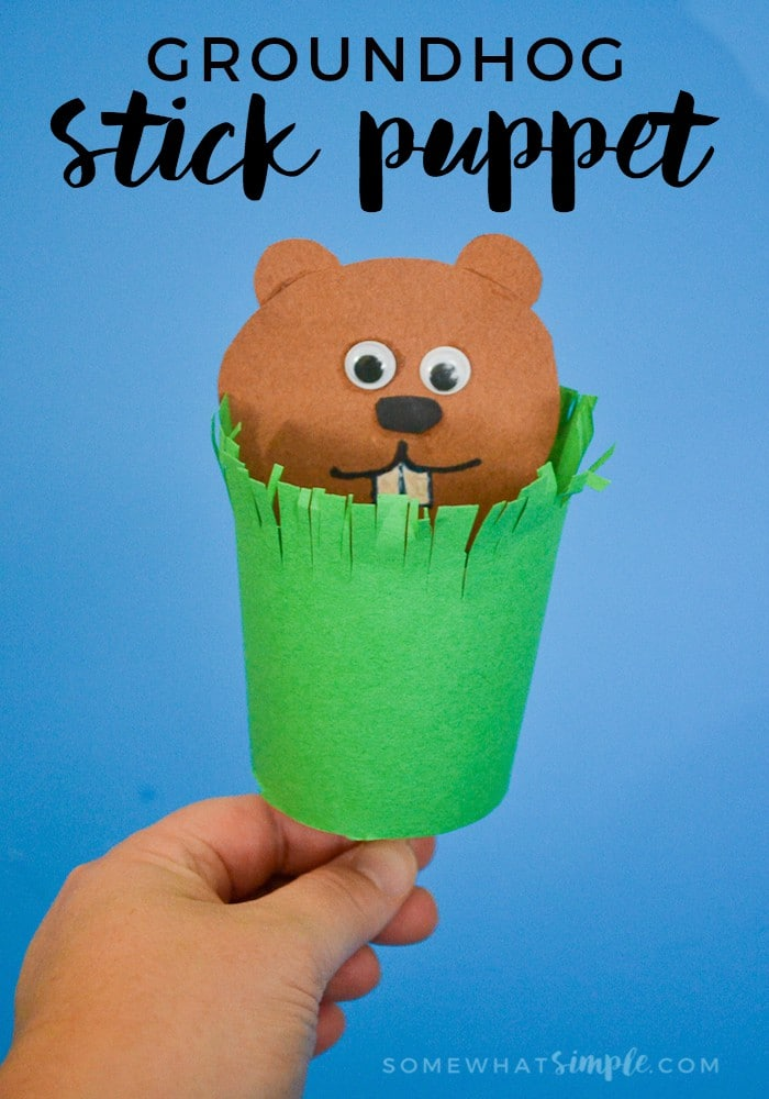 Grab the kids + a few basic craft supplies and make this cute little groundhog stick puppet for Groundhog's Day! via @somewhatsimple