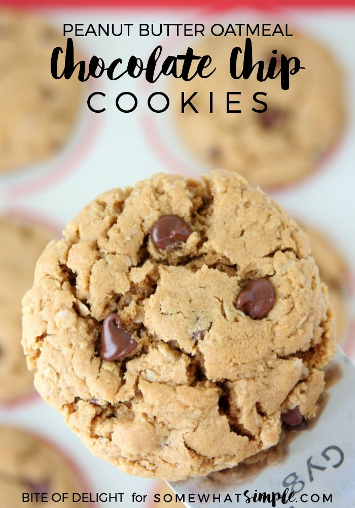 Peanut Butter Oatmeal Chocolate Chip Cookies | Easy Recipe | Gluten Free | Dairy Free | Treat