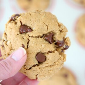 Peanut Butter Oatmeal Chocolate Chip Cookies   Easy Recipe   Gluten Free   Flourless   Dairy Free   Treat