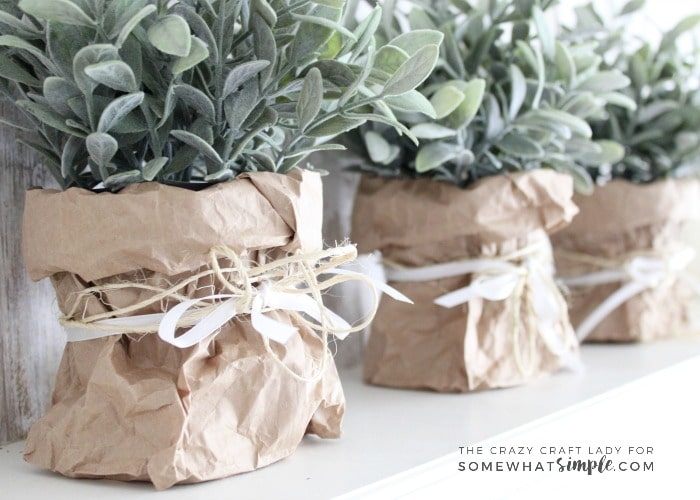 How To Make Simple Paper Bag Planters For Spring Somewhat Simple