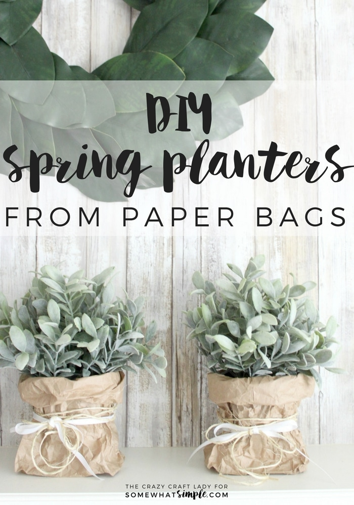 How to make simple paper bag planters for spring somewhat simple follow this tutorial to learn how to make super simple spring paper bag planters this mightylinksfo