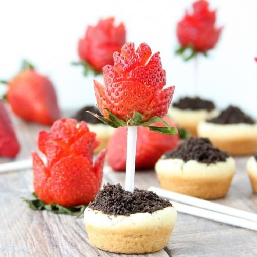 Sugar Cookie Flower Pots with Strawberry Roses | Easy Treat Recipe