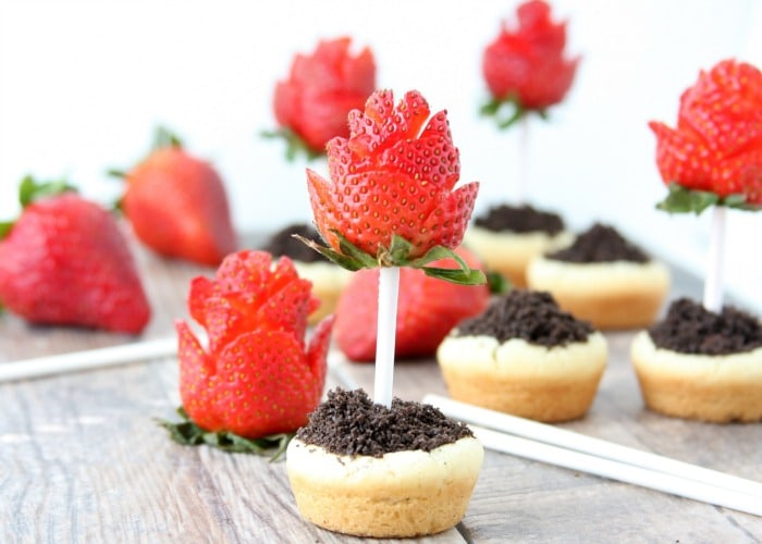 Sugar Cookie Flower Pots with Strawberry Roses