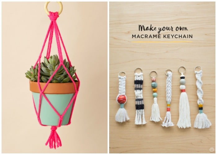 a plant hanging from a holder made of yarn and a few key chains made of yarn